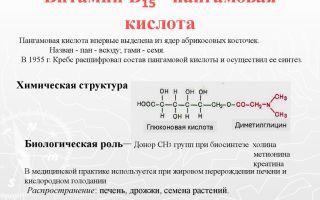Витамины в растительных маслах