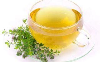 Чабрец — лечебные свойства, противопоказания и рецепты