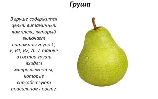 Витамины в груше