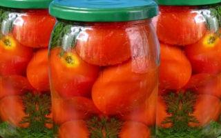 Ботва моркови — полезные свойства и противопоказания, как применять