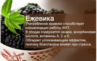 Витамины в ежевике