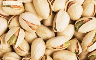 Фисташки — польза, вред, свойства, калорийность
