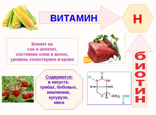 Витамин в7 биотин польза для организма суточная потребность