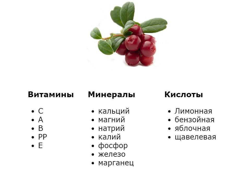Брусника лечебные свойства для похудения