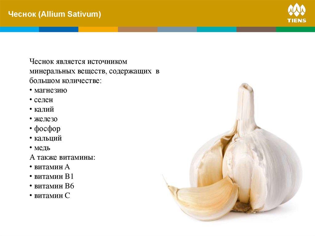 Чеснок какие витамины содержит больших количествах