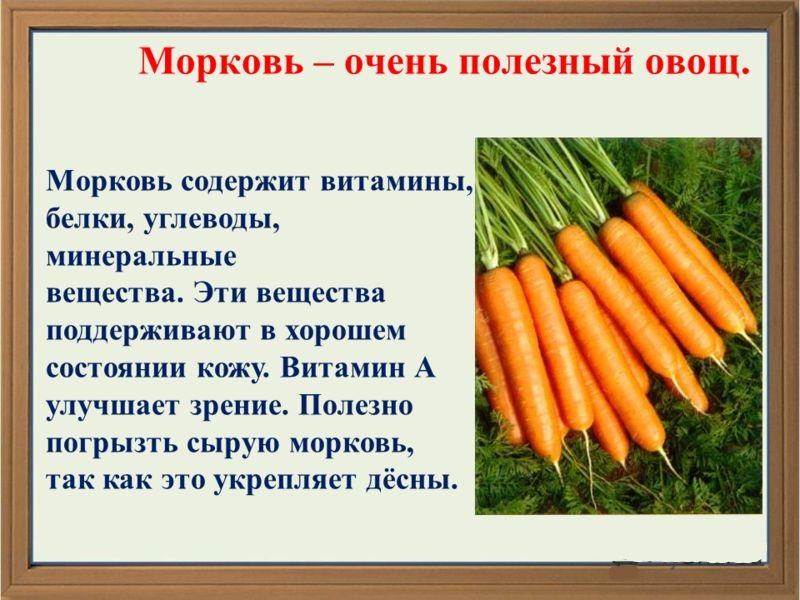 Какого витамина больше в моркови