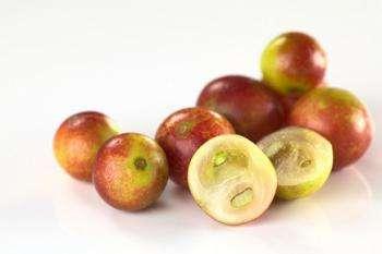 Ягоды Каму-каму — полезные свойства и противопоказания