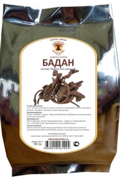 Бадан — лечебные свойства, противопоказания, применение