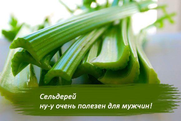 Сельдерей — польза и вред для здоровья женщин и мужчин, свойства и противопоказания