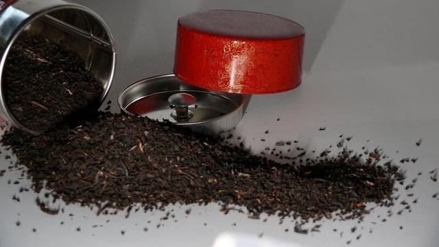 Растение цимицифуга — полезные свойства, противопоказания