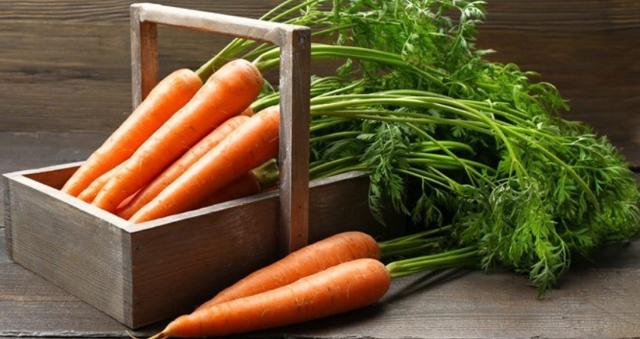 Ботва моркови - полезные свойства и противопоказания, как применять