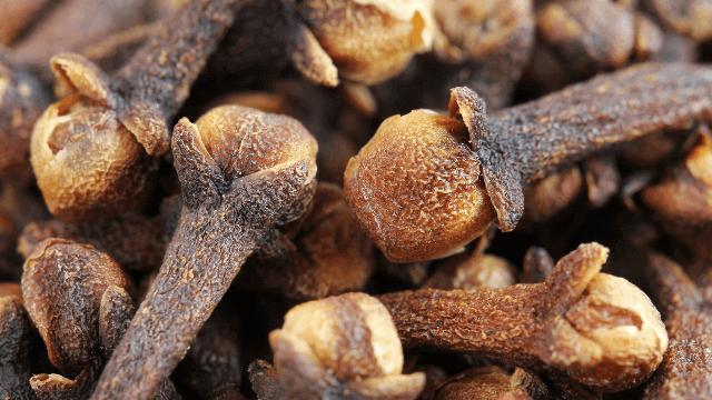 Гвоздика — полезные свойства и противопоказания, зачем её жевать