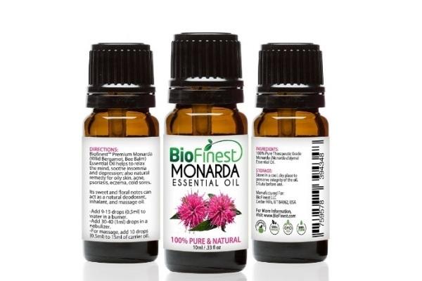 Монарда — лечебные свойства, противопоказания, применение