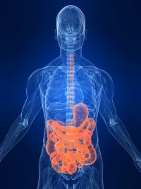 Дефицит цинка - симптомы и признаки, как лечить