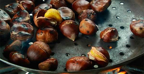 Каштан съедобный — польза, вред, как отличить, как готовить