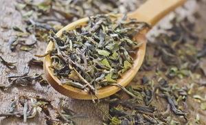 Курильский чай — свойства и противопоказания, применение и состав