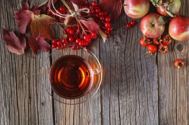 Настойка из калины — рецепты на водке, на спирту, свойства