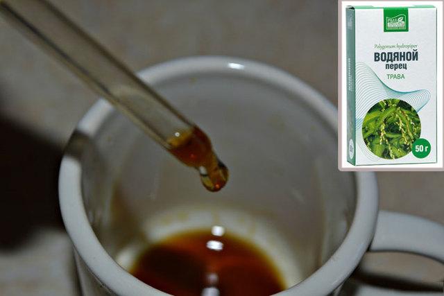 Водяной перец — применение, лечебные свойства, противопоказания