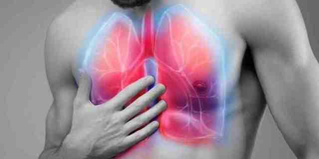 Борец(аконит): полезные свойства и противопоказания