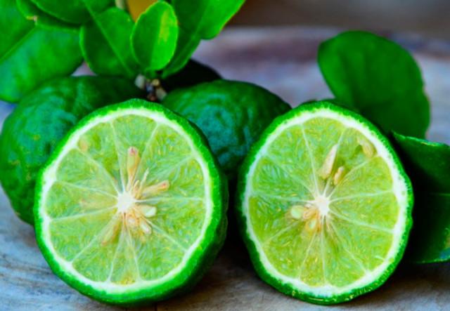 Эфирное масло бергамота — свойства, применение, польза
