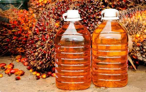 Пальмовое масло — польза и вред, рецепты