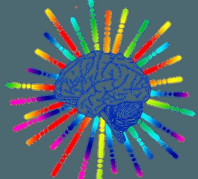 Готу кола — полезные свойства, противопоказания, применение