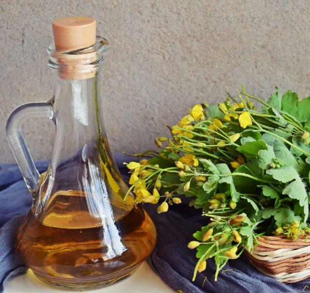 Настойка чистотела — рецепт на водке, как принимать