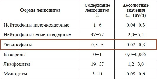 Эозинофилы повышены у взрослого – о чем это говорит и что надо делать (таблица нормы)