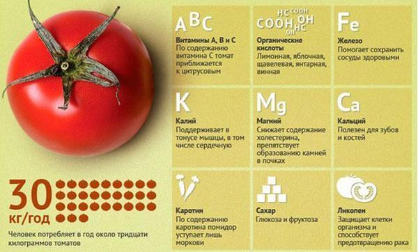 Помидоры: польза, вред и противопоказания для организма