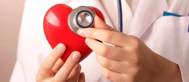 Оносма — польза, лечебные свойства и противопоказания