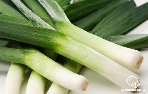 Лук порей: польза и вред для организма, рецепты