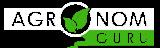 Агарикус — лечебные свойства, противопоказания, применение