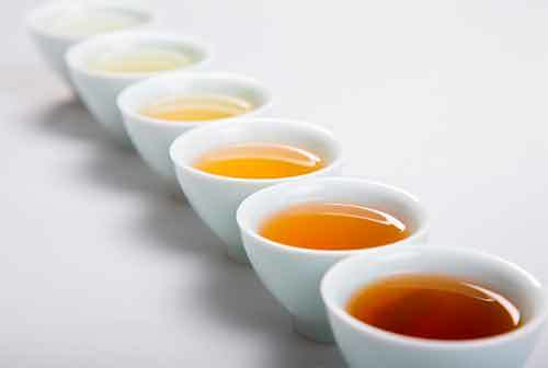 В какое время лучше пить зеленый чай, утром или вечером